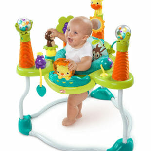 Toys Bright Starts Smiling Safari Jumperoo